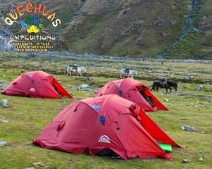 quechuas camping equipment