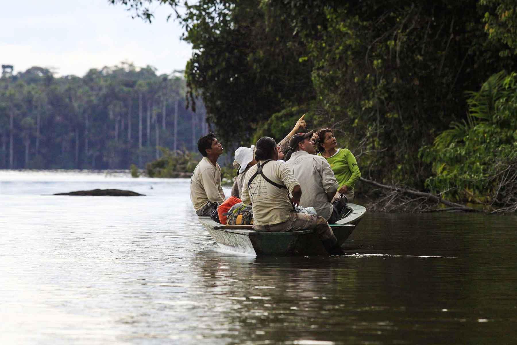 Upper Tambopata Chuncho Macaw Clay Lick and Sandoval Lake 5 Days (14)
